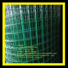 YW-- Galvanized and PVC coated welded wire mesh /Skype: randy.liang1