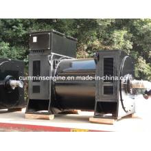 Vente Alternateurs Sychronous AC de 10500V de moyenne vitesse (5601-6 900kw / 800kw)