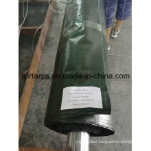 China Green Poly Tarp Cover, Poly Tarp Roll, PE Tarpaulin Roll