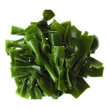 OEM de alta calidad Delicioso y confiable disponible Suministro de fábrica Kelp PE