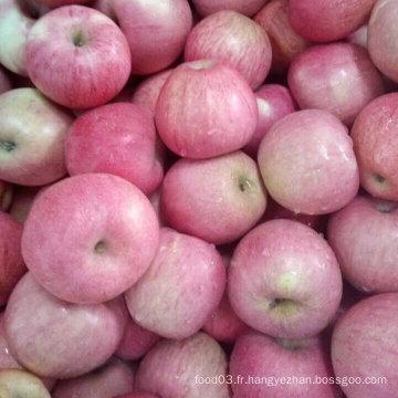 Haute qualité de pomme rouge Qinguan frais