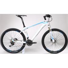 Carbon Fiber Mountain Bike CB 10 /Mountain Bike