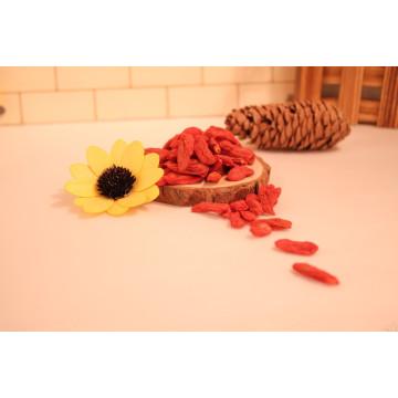 Granos de Goji Frutas de Wolfberry