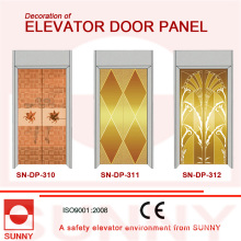 Stainless Steel Door Panel for Elevator Cabin Decoration (SN-DP-310)