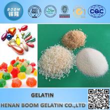 Technical Gelatin