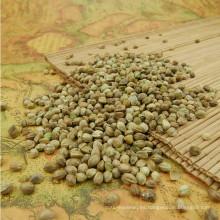 Semillas de cáñamo semilla de aceite de alimentación de aves para semillas de plantas