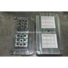 Diseño modificado para requisitos particulares plástico del molde del hogar de la inyección