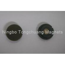 Emblemas magnéticos em forma redonda