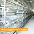 Tianrui Good Design Chicken Cage For Poultry Farm