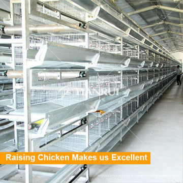 Cage de poulet de bonne conception de Tianrui pour la ferme de volaille