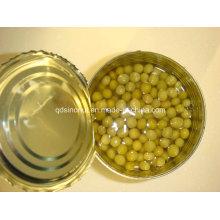 Günstige Preis Gute Qualität Dosen Grüne Erbsen