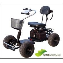 800W Single Seat Trekker Golf Cart 413G-2