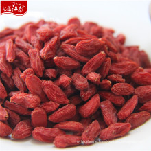 Factory supply wholesale ningxia goji berry russia