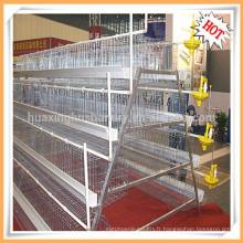Prix de la cage de poulet pour la ferme de volaille