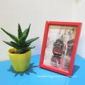 Custom multicolor plastic frame