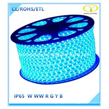 Blue 5050SMD LED Strip Light for Christmas Decoration