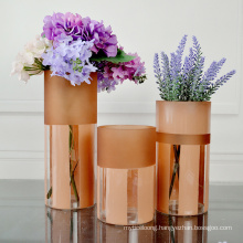Manufacturers Customize Various Household Ordinary Glass Vases with Different Specifications