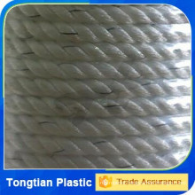 The Leading Brand of Rope Industry in China Polyester 3 strand rope