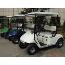 2 местный электрический гольф-багги на поле для гольфа