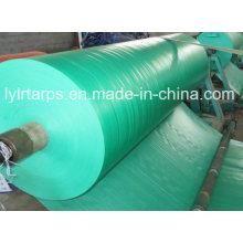 HDPE Laminted Green Tarpaulin Roll, PE Tarp Roll/Poly Tarp Cover