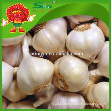 Chinese White Pure Garlic Healthy Oraganic Food