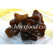 2.5-3cm Orgânico Natural Preto Fungo Nuvem Madeira Eea
