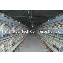 Hot Sale Galvanization Breeder Chicken Cage (A type)