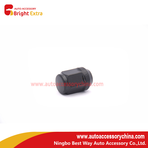 LN170010 aftermarket lug nut Kit