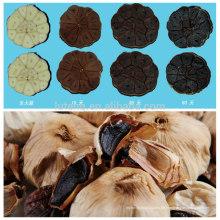 Fermentierter schwarzer Knoblauch Organischer schwarzer Knoblauch Fermentiert für 90 Tage