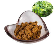 factory supply mate tea extract powder 10:1/mate tea powder