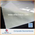 PP Pet Geotextile Composite Compound HDPE LDPE Geomembrane