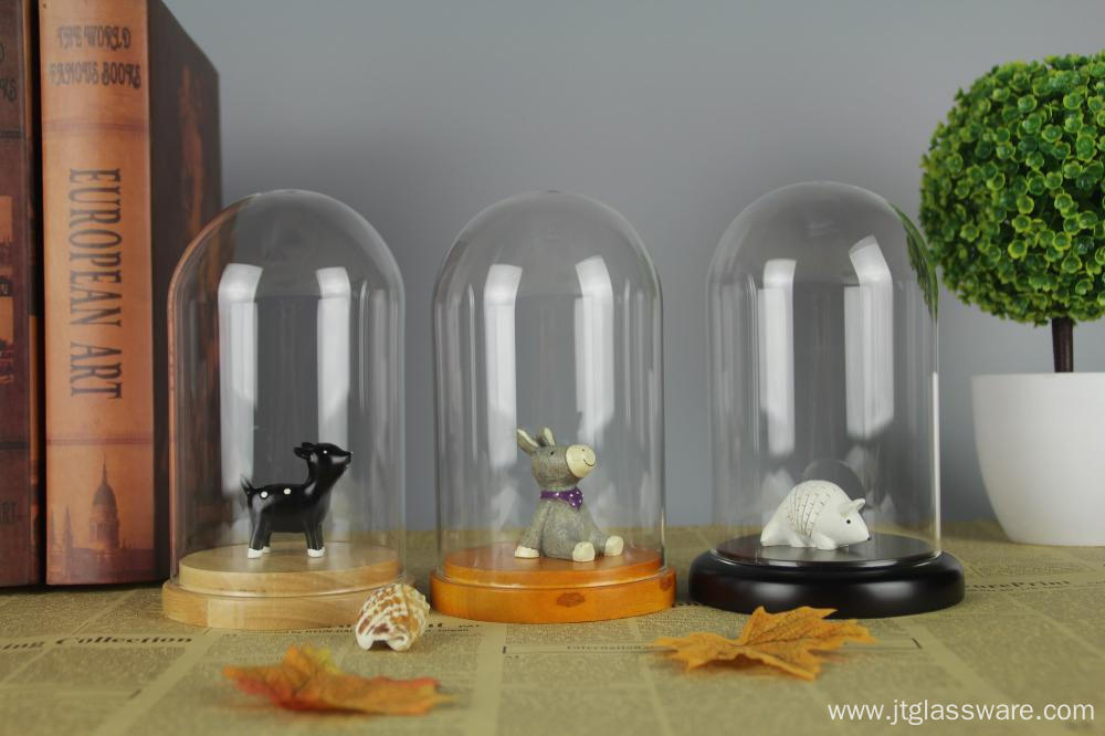Clear Glass & Wood Tabletop Display Case