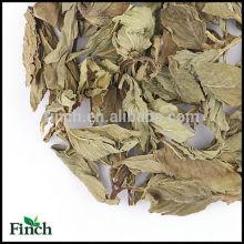 Chá erval secado da pastilha de hortelã, chá erval secado da folha de hortelã