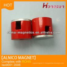 aimants alnico 5 cylindre avec trous ronds