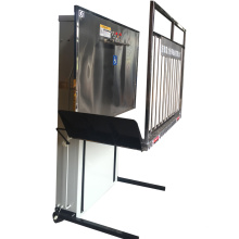 6m 400kg hydraulic home wheelchair chair lift for home