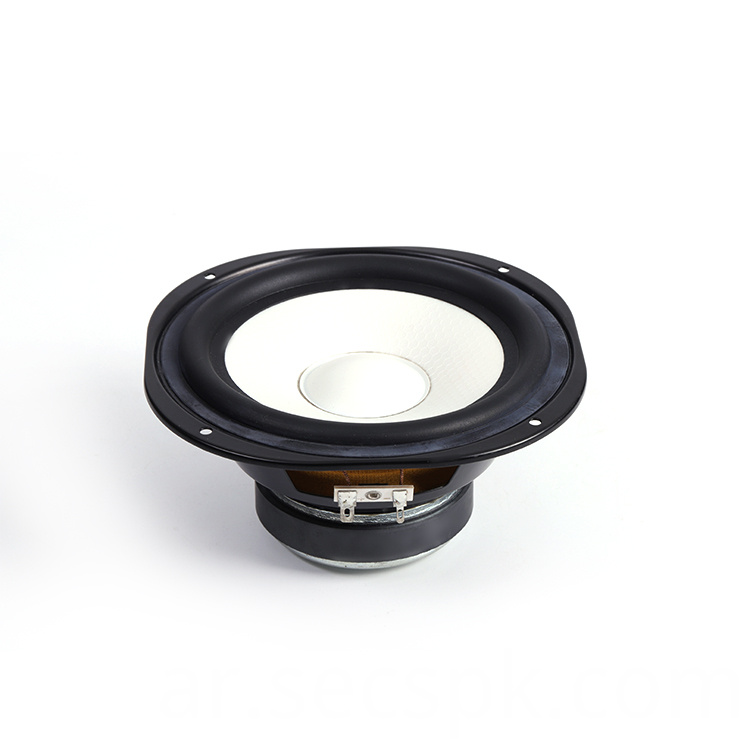 8ohm Injection Cone Speaker