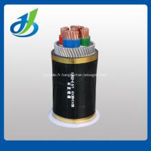 0.6 / 1KV cuivre / noyau en aluminium isolé XLPE PVC blindé câble d'alimentation blindé