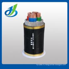 0.1/6kv XLPE Insulated PVC/XLPE sheathed STA Cables