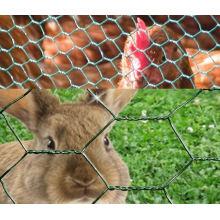 Шестигранная проволочная сетка для птицеводческой сети