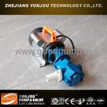 Wcb Gear Oil Pump