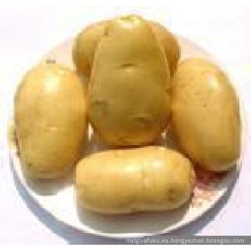 Patata fresca amarilla suave