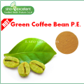Green Coffee Bean pe