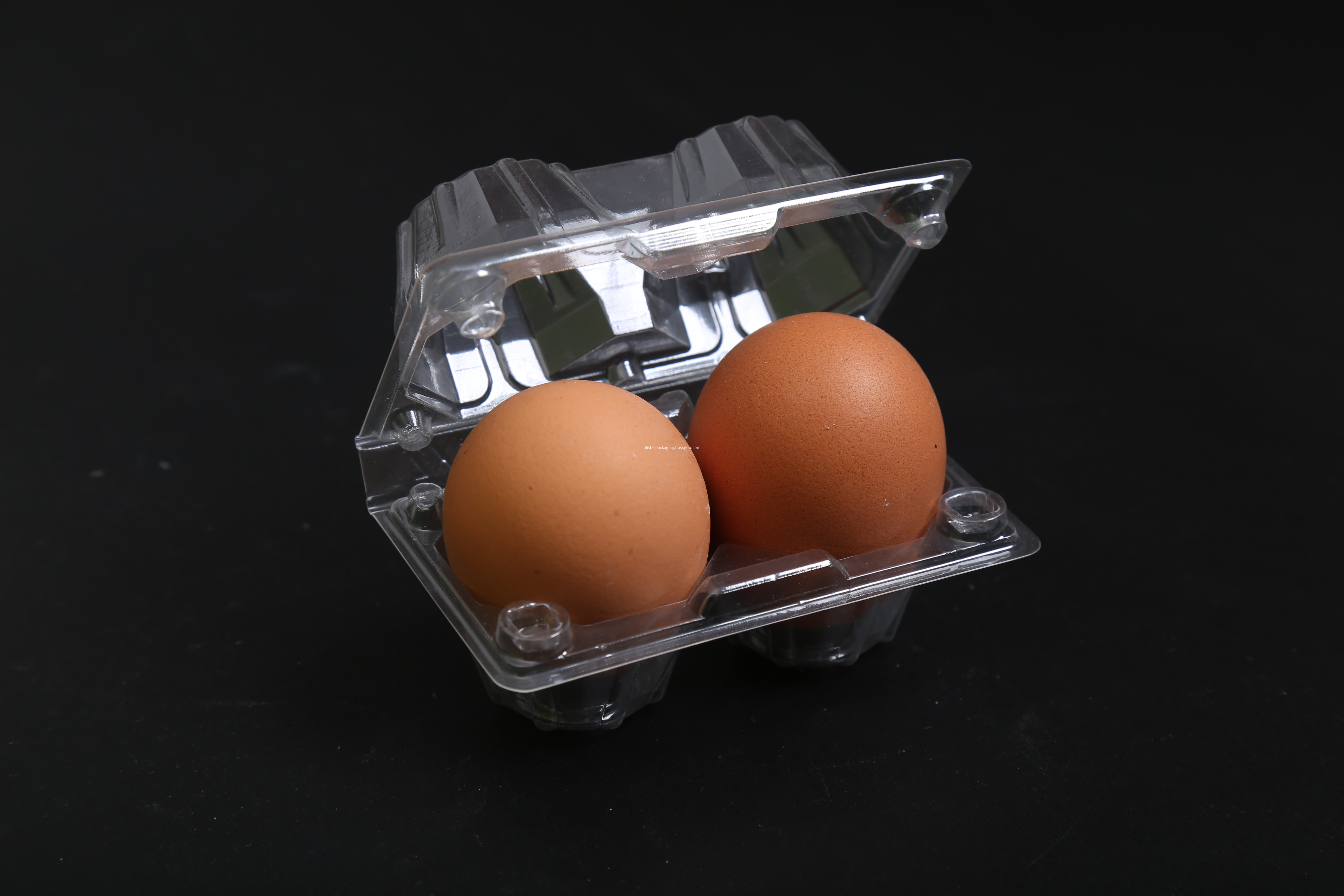 chicken eggs cartons