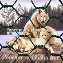 hexagonal galvanizado para cães venda quente