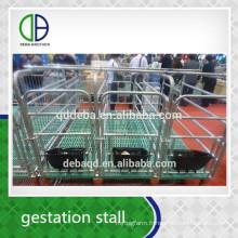 Cochon Gestation Stall Bonne qualité pour la stalle de cochon