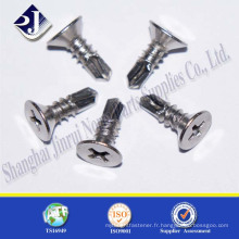 Fabriqué en Chine DIN 7504 Flat Head Countersunk Screw