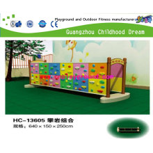 Climbing Combination for Children Playground for Kid Education Equipment for Children Small Playground (HC-13605)