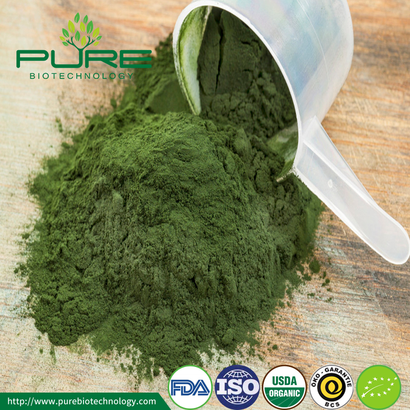 High Quality Organic Spirulina Powder5