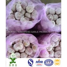 10kgs Mesh Bag Packing Normal White Garlic 5.0cm