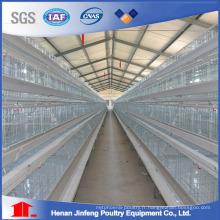 Équipement de volaille de type Cage de poulet pour calques